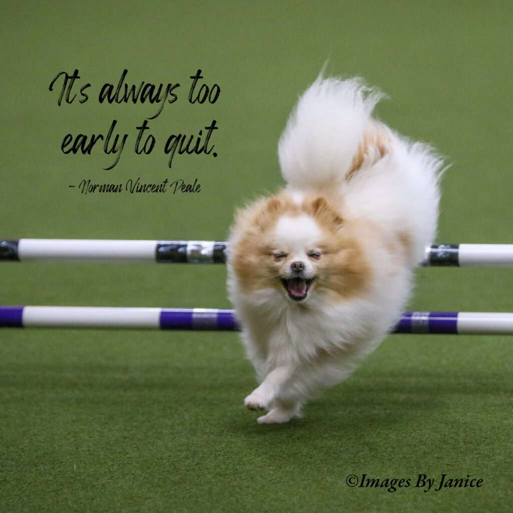 """""""It's always too early to quit."""" - Norman Vincent Peale"""