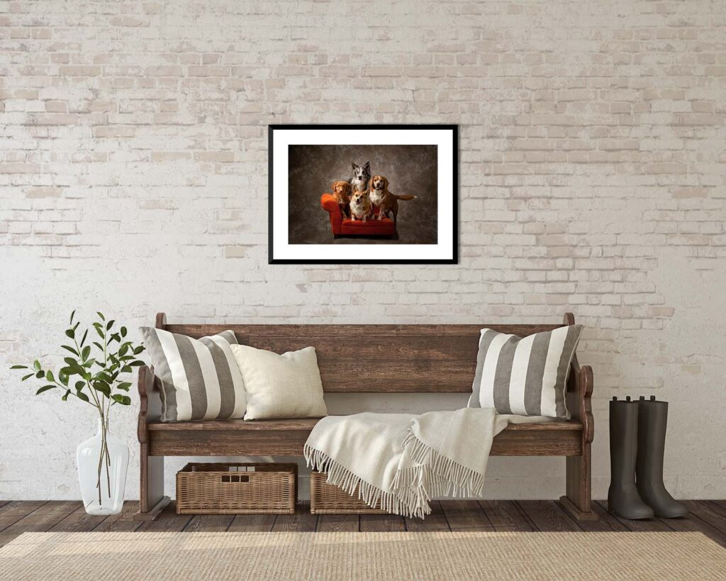 Pet family portrait hanging over bench - Images By Janice Lukenbill